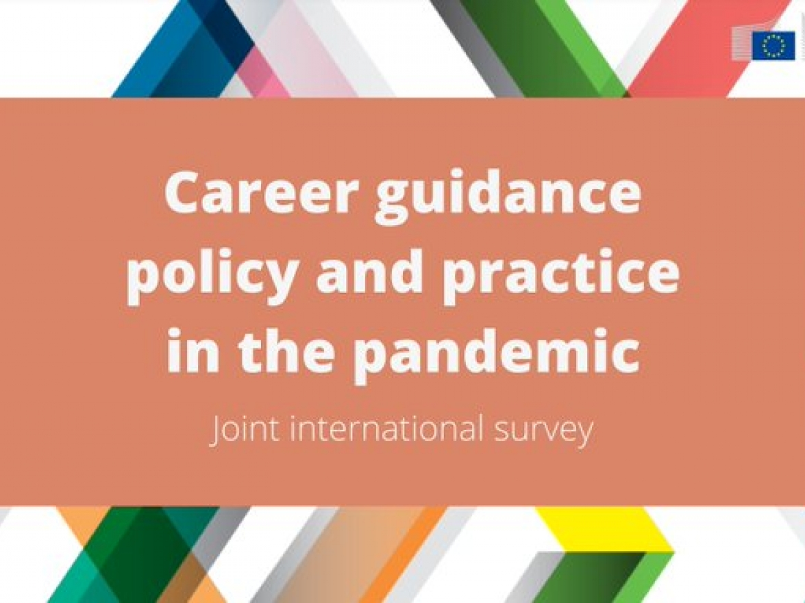 Onderzoek 2021 career guidance and the pandemic